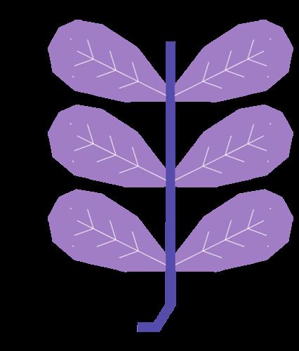 categorie-image-4-1