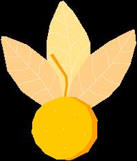categoria_fruits_vegetables_peruvian